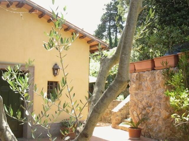Villino con giardino vista mare
