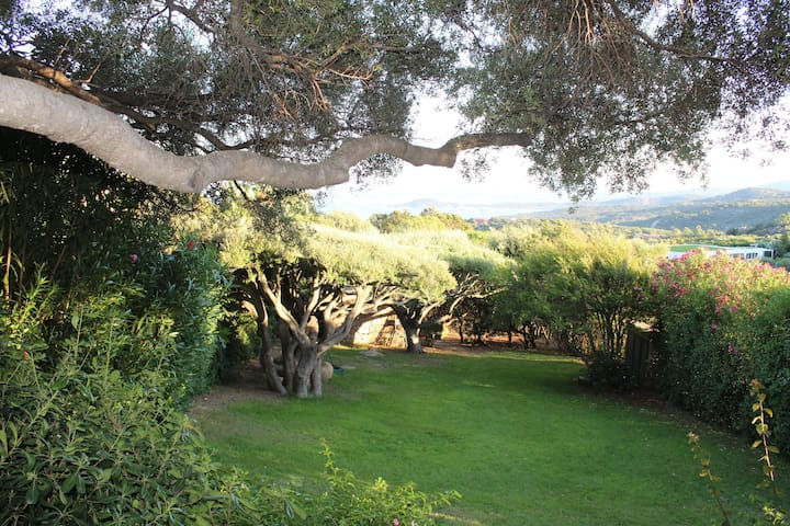 "Lovely Holiday Home ""La Casa Degli Ulivi""with Sea View, Mountain View, Wi-Fi, Terraces & Garden; Parking Available, Pets Allowed"