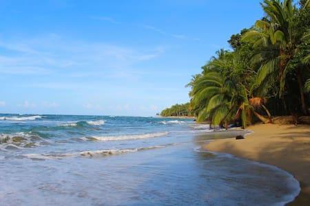 Seafront Sloth Club - Puerto Viejo de Talamanca - Cabin
