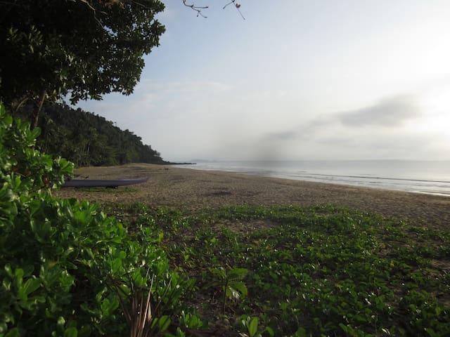 Magic Bingil Bay 200m away