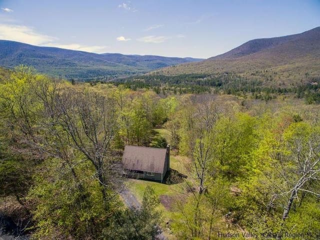 Surrounded by six lush, wooded acres and backing up to 80 acres of forever wild land with beautiful mountain views
