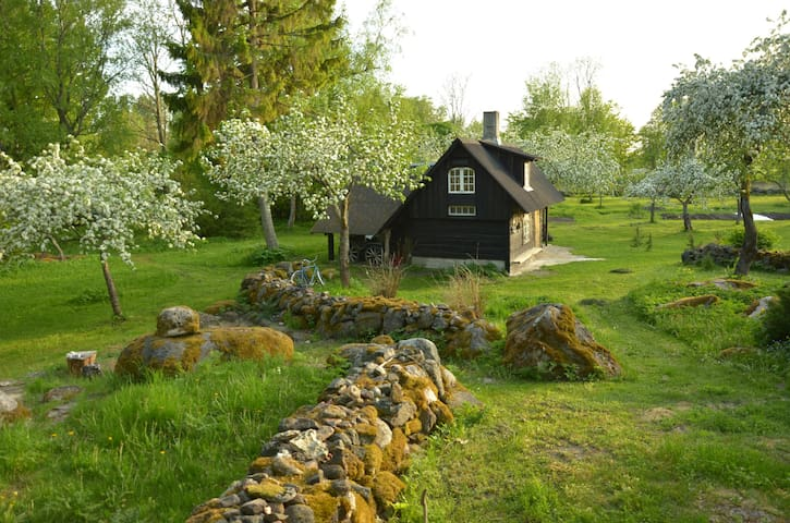 Spring view of the Saunahouse
