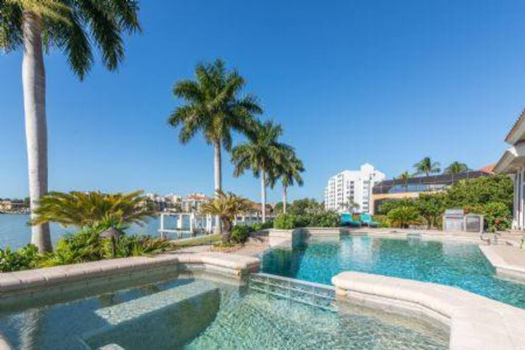 Sun Pool and Palms