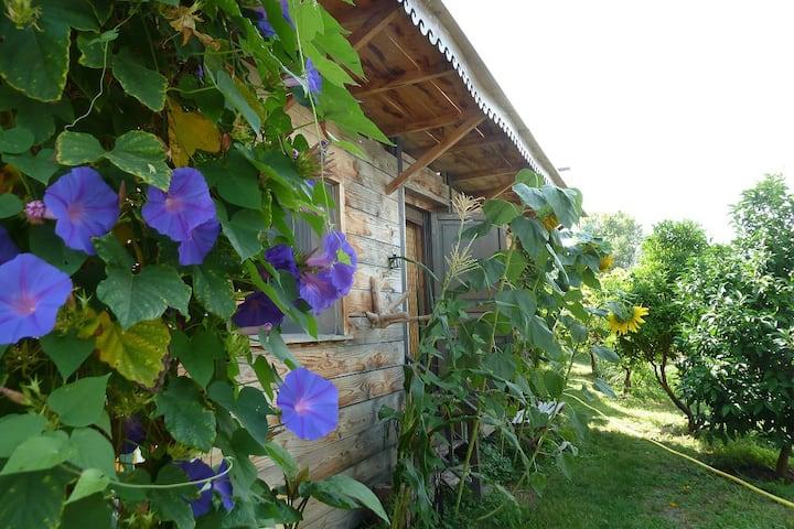 La Cabane du Potager ... Gîte Agriculture Bio