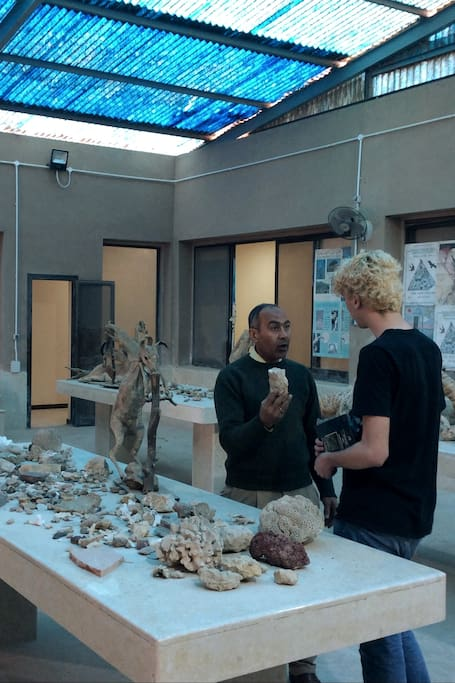 Exploring all rocks' types in show room.