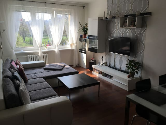 Modern flat near centrum of Ostrava - Ostrava - Appartement