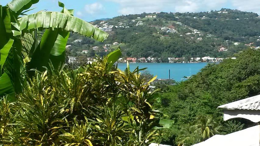 T2, jardin, vue sur mer, piscine et jacuzzi - La Trinité - Apartment