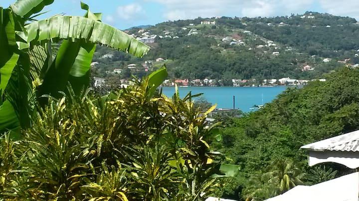 F2 sur jardin, vue sur la mer, piscine et jacuzzi
