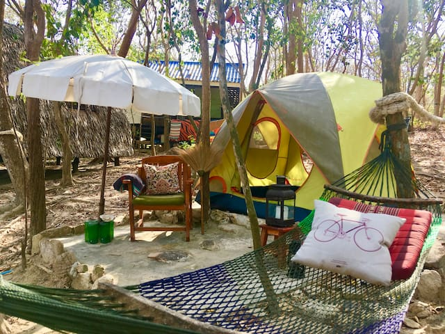 Noina's Mystic Mountain Camp 1