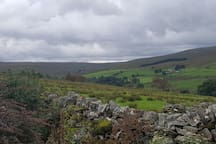 Rural location with North Pennine views