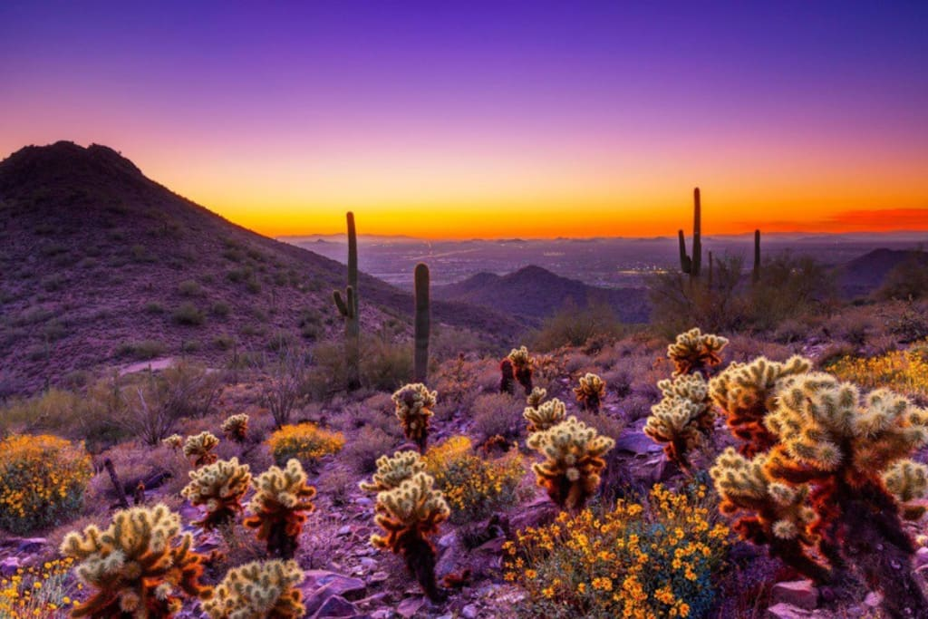 McDowell mountains are nearby. The closest trailhead, Gateway Trailhead is about 4 miles away. You can walk, run, bike, or drive there with a subtle incline.