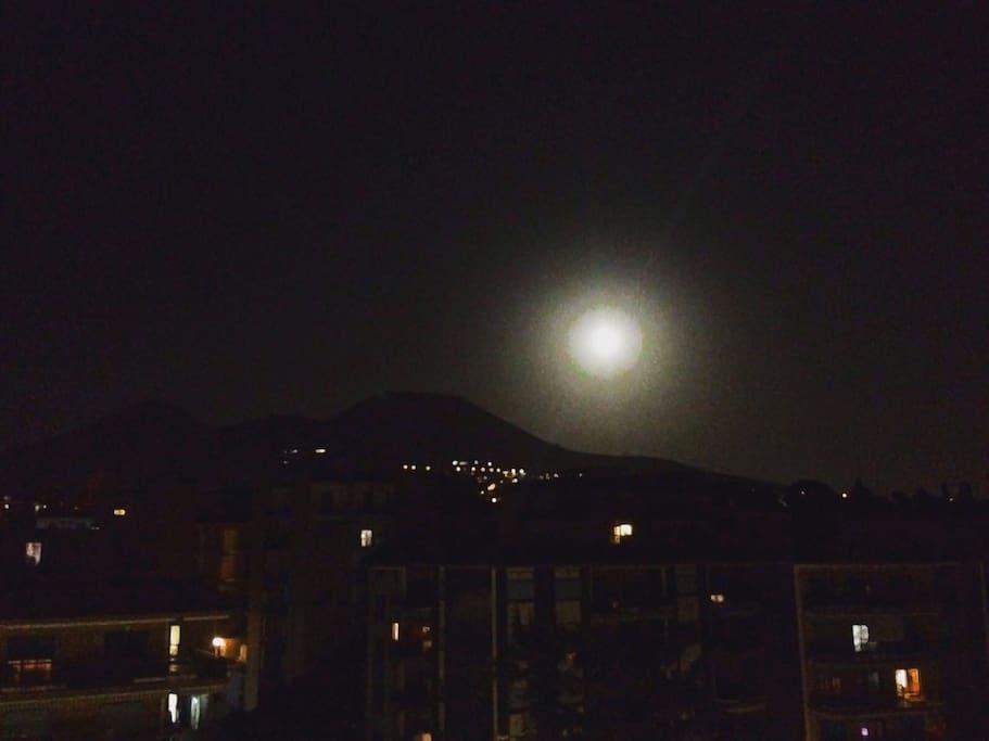 Moonlight!!