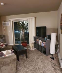 Guest Bedroom in South Fargo