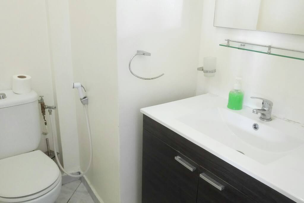 Bathroom with shower, toilet, washbasin / Salle de bain avec douche, WC, lavabo