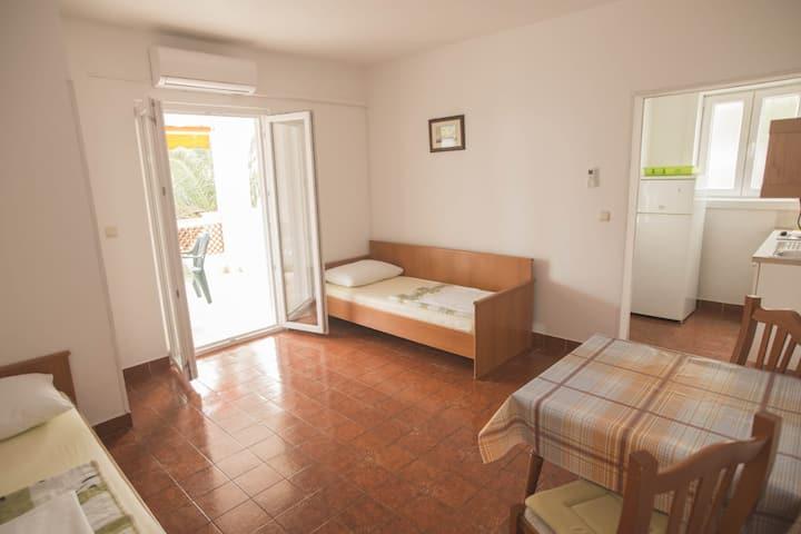 Apartments VILA VELEBITA Mandre 1