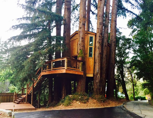 Luxury Treehouse in the Redwoods