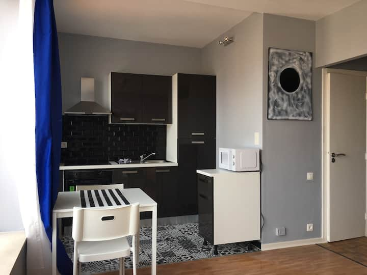 Fully renovated and Furnished Apartment