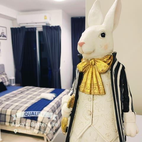 Bunny sweet home/design award,北欧小镇设计大奖,抖音网红火车夜市。