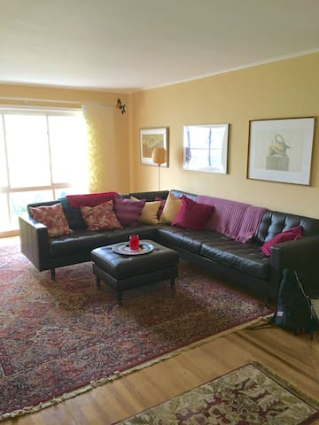 Charming 3 Bedroom In The Heart Of The Marina Apartments For Rent In San Francisco California