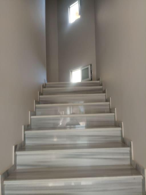 Σκάλα Κεντρικής ειδοδου
