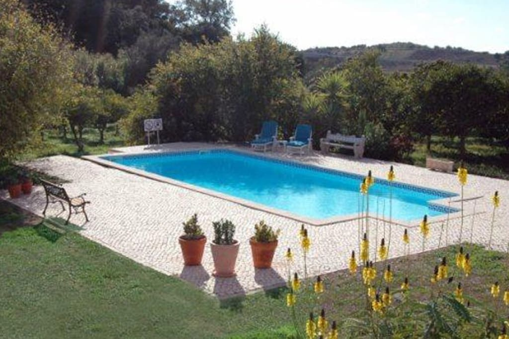 Pool which is situated on the farm across the road