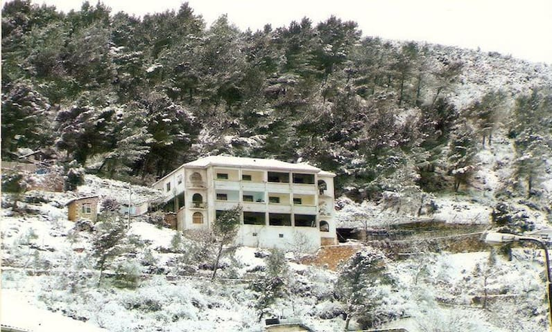 Room with a view of Tepelene - Tepelenë - House