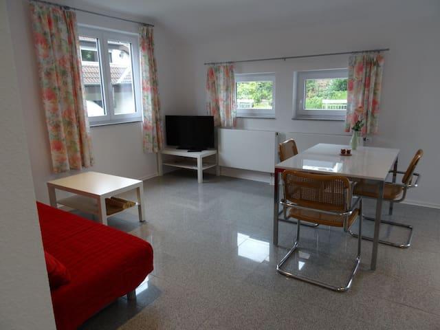 40 m2 Fewo Heidelberg Schlierbach - Heidelberg - Appartement