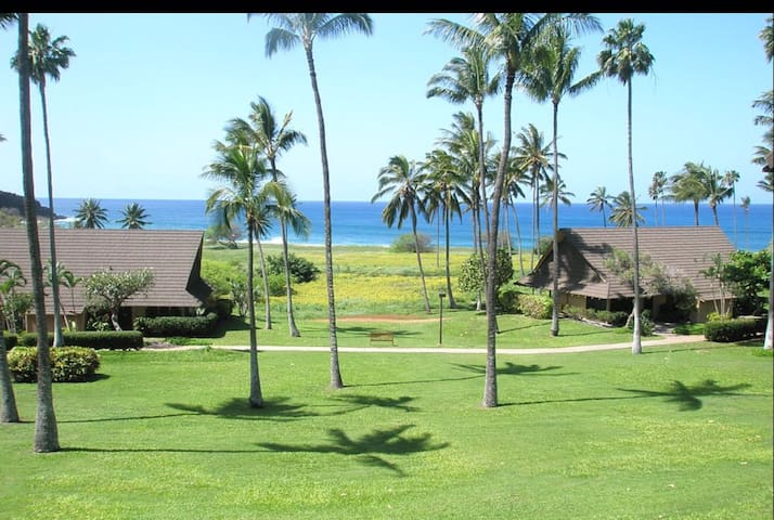 Molokai Ocean View Studio Condo at Kephui Beach - Maunaloa - อพาร์ทเมนท์