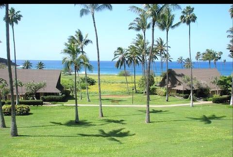 Molokai Ocean View Studio Condo na Kephui Beach