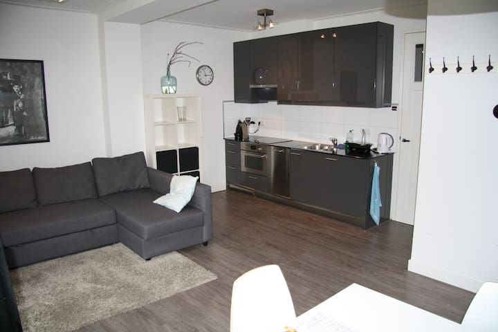 Comfortable apartment in relaxed area of Utrecht - Utrecht - Apto. en complejo residencial