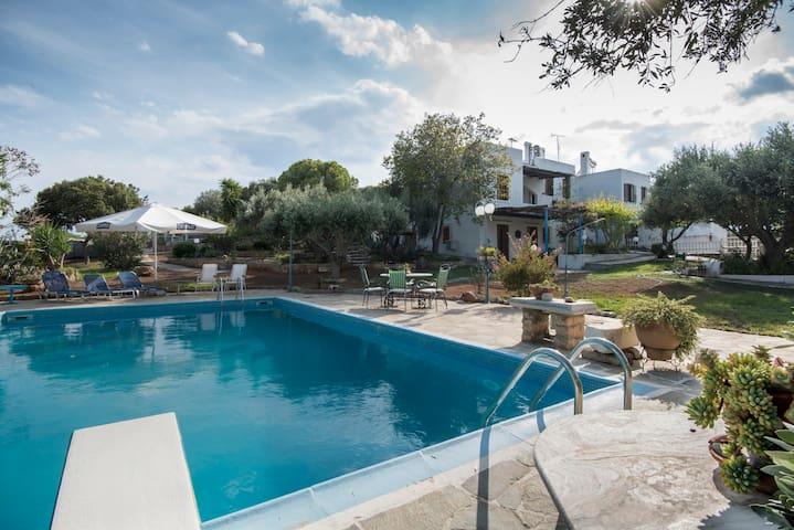 Blue Sea Villa - new listing, 1min walk to beach - Kalivia Thorikou - Rumah