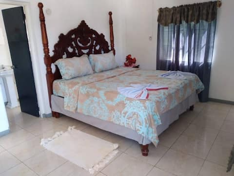VIVIENNE'S ROOMS #A4 TV+AC+WIFI, Negril rd