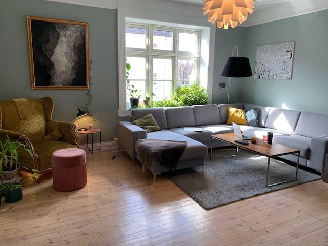 Beautiful apartment in Torshov