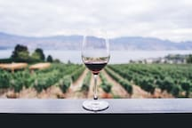 Over 400 wineries to visit during your stay in the Napa Valley.