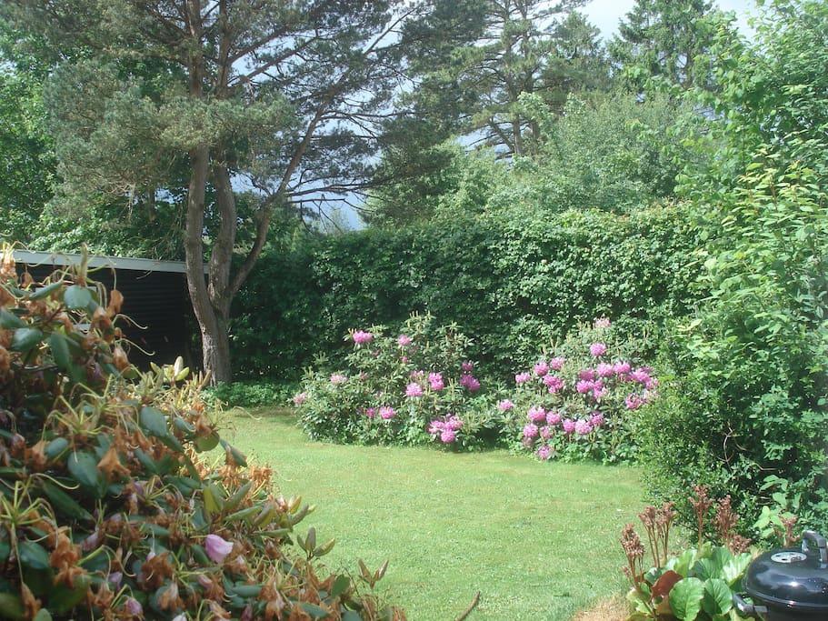 Udsigt fra spisestuen og terrasse til sydvendt have.