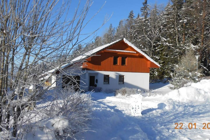 Charming 3-Bed Villa in Lipno nad Vltavou