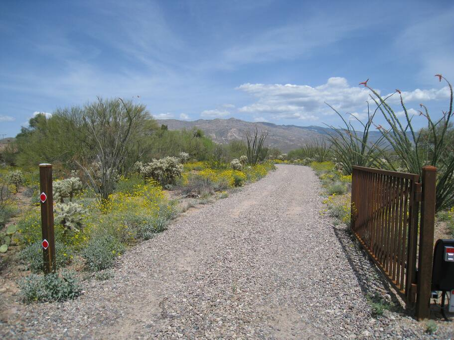 Entrance to the property with view of the Rincon Mountains