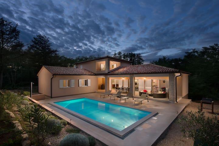 Istrian Villa Happy House - Labin