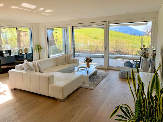 Modern living with a great view in Lucerne