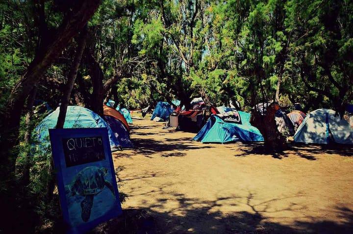 Camping Elizabeth - Furnished igloo tent