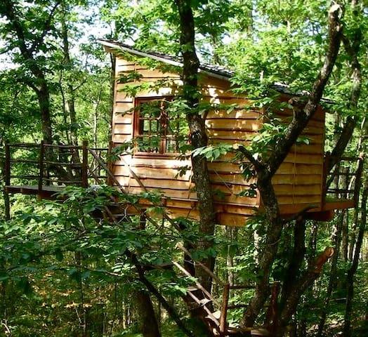 Cabane Les Arbres - Puycelsi