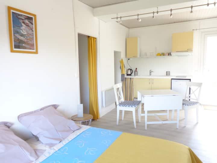 Grand studio clair et calme avec terrasse privée