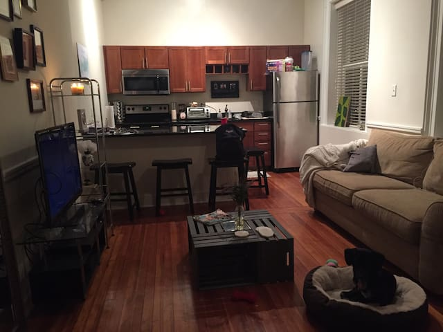 One bedroom apt near Downtown RVA - Richmond - Apartamento