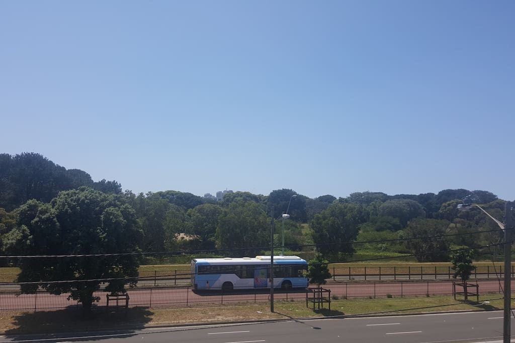 views to Centennial Park