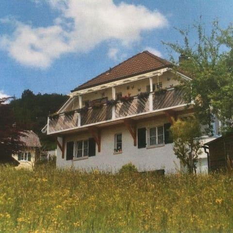 位于自然保护区内,安静,空气清新,离公交车站近,带车库和花园 - Welschenrohr - Appartement