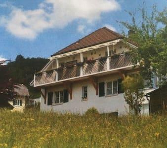 位于自然保护区内,安静,空气清新,离公交车站近,带车库和花园 - Welschenrohr