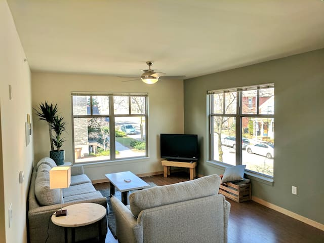 Downtown 2 Bedroom - Great Light - Quiet - Madison - Flat