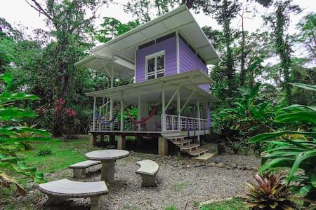 caribbean jungle/beach vacation house
