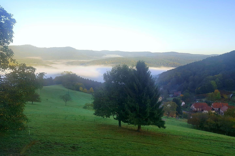 vue d'un matin d'automne depuis la terrasse...