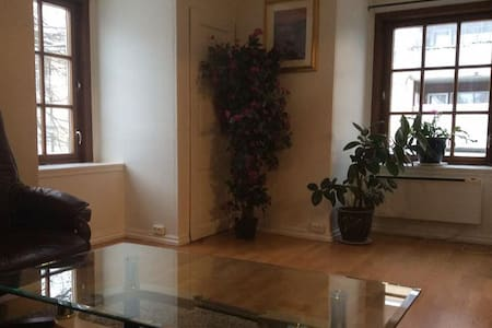 Big & Spacious Apartment with Great Location! - Sandefjord